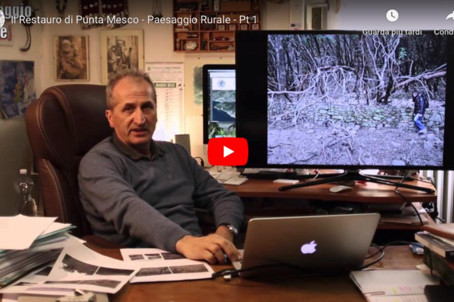 Il recupero  del paesaggio rurale di Punta Mesco