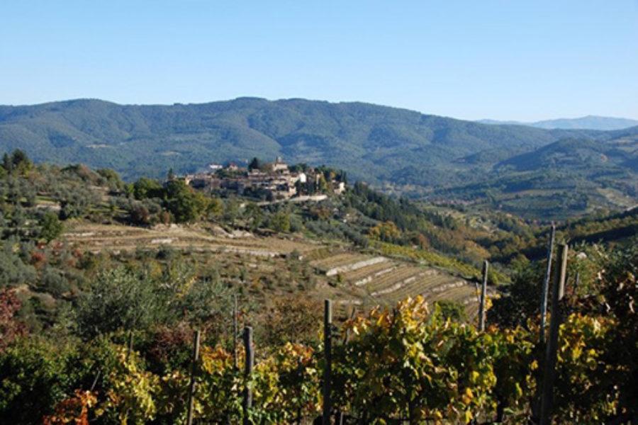 Osservatorio del paesaggio della Regione Toscana: I terrazzamenti in pietra a secco