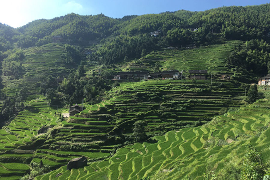 I paesaggi rurali della Cina e l'Italia