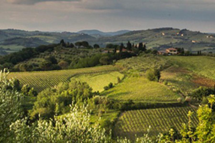 Pianificazione del paesaggio e sviluppo sostenibile in Italia: il caso della Toscana.