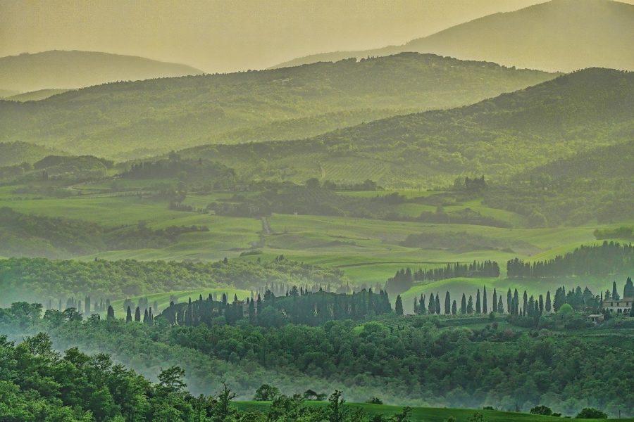 L'aumento dei boschi in Toscana, e l'identità del paesaggio